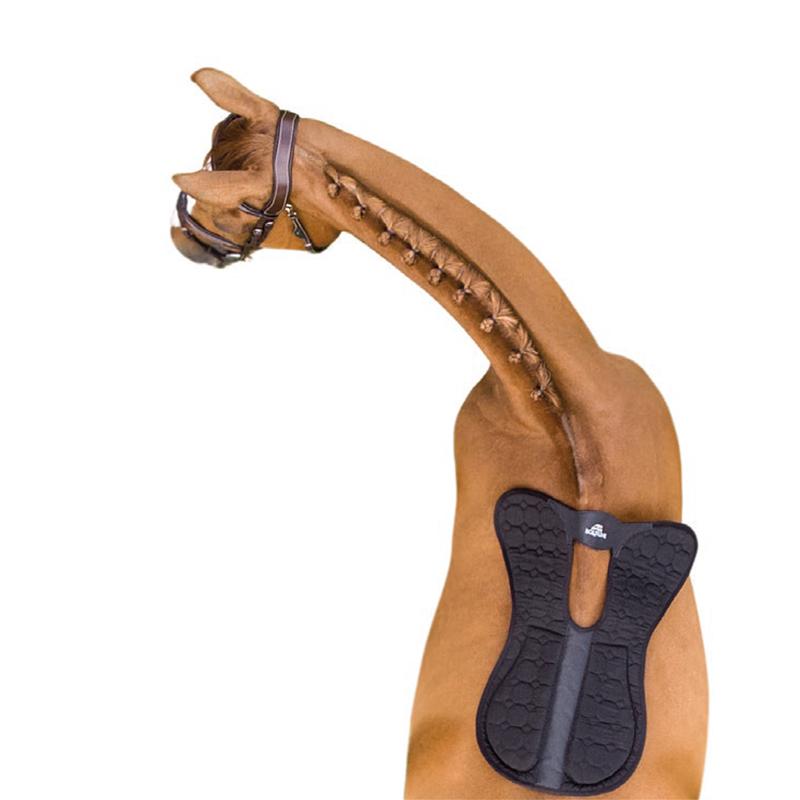 Balancer pad häst