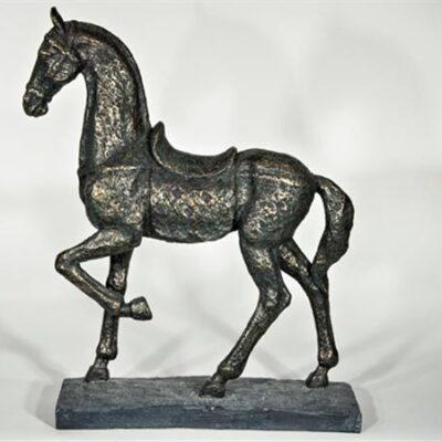 Chennai Häst